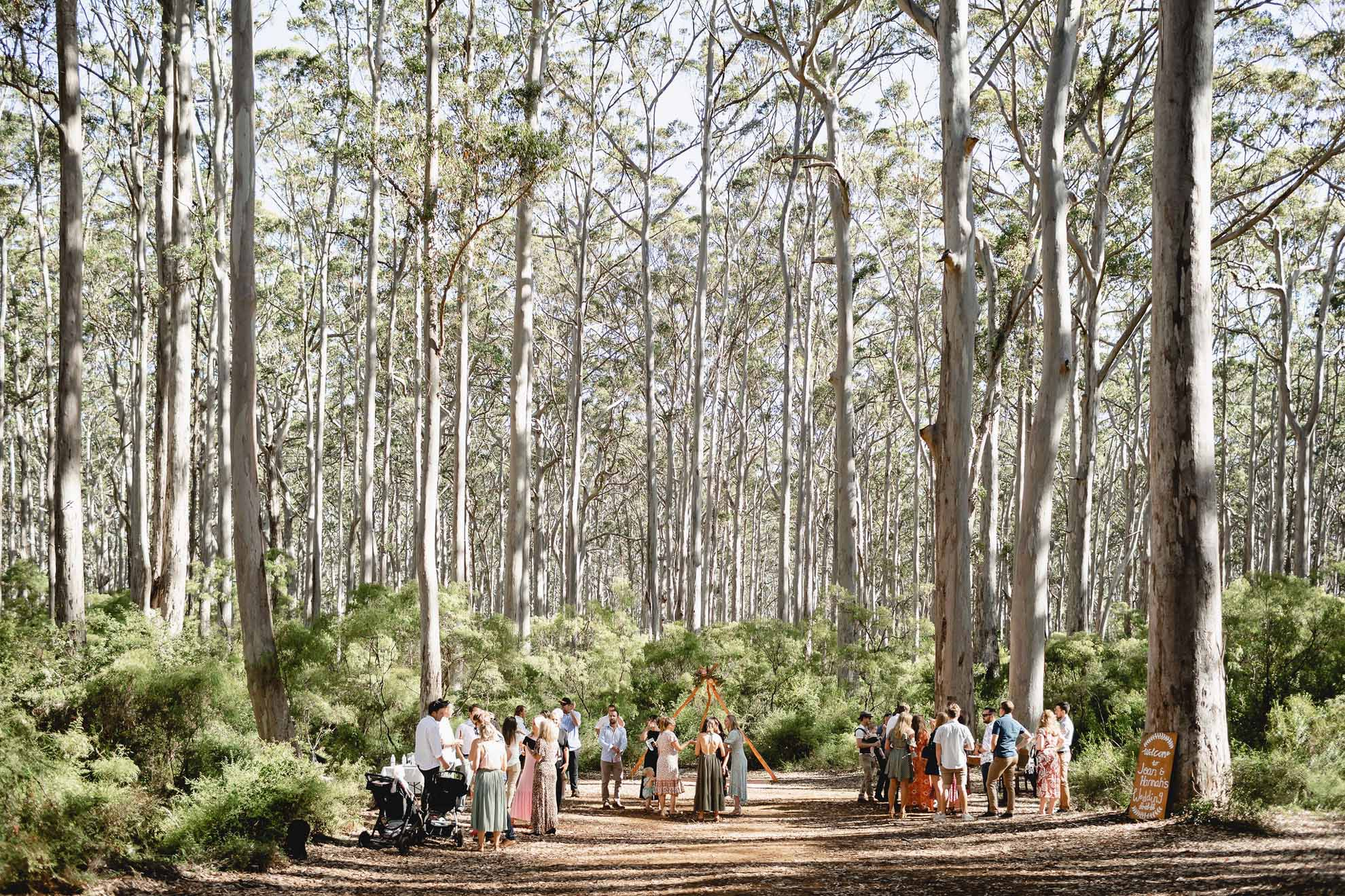 Photogerson Margaret River Western Australia lesbian two brides gay forest country wedding Dancing With Her (1)